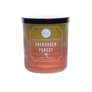 DW Home Evergreen Forest 1wick