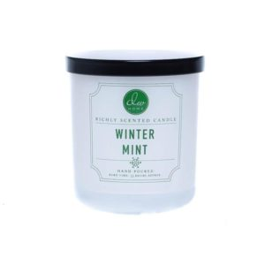 DW Home Winter Mint 1wick